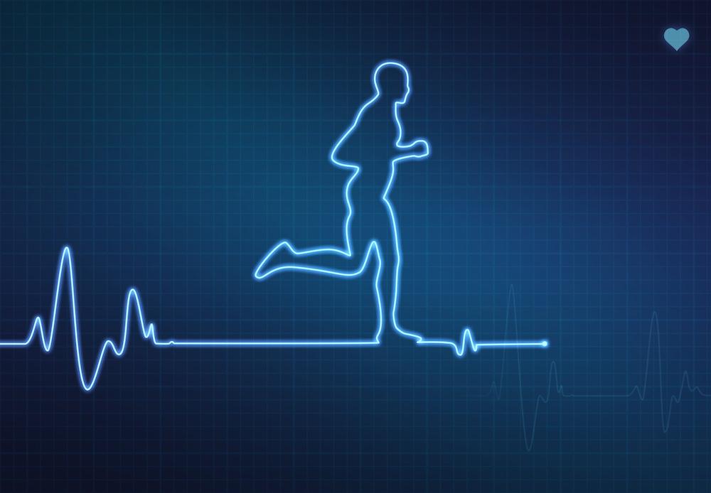 Maximize Your Bodys Fat Burning Potential Endurance Magazine