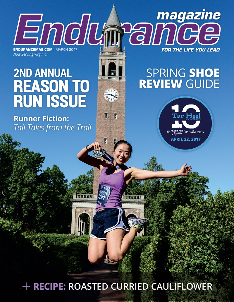 Endurance Triangle MAR 2017 Cover