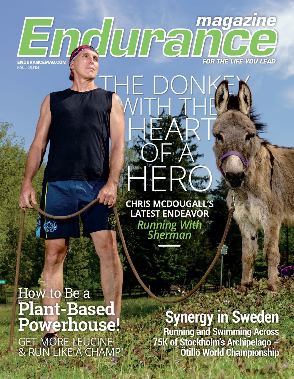 Endurance Fall 2019 cover